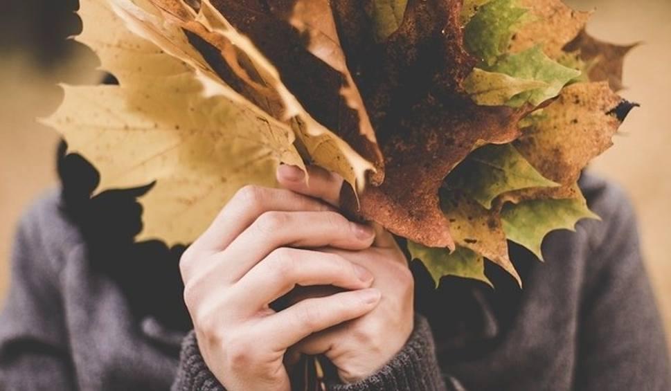 Film do artykułu: Pierwszy dzień jesieni 2018. Równonoc jesienna. Kiedy zaczyna się jesień astronomiczna, a kiedy kalendarzowa?