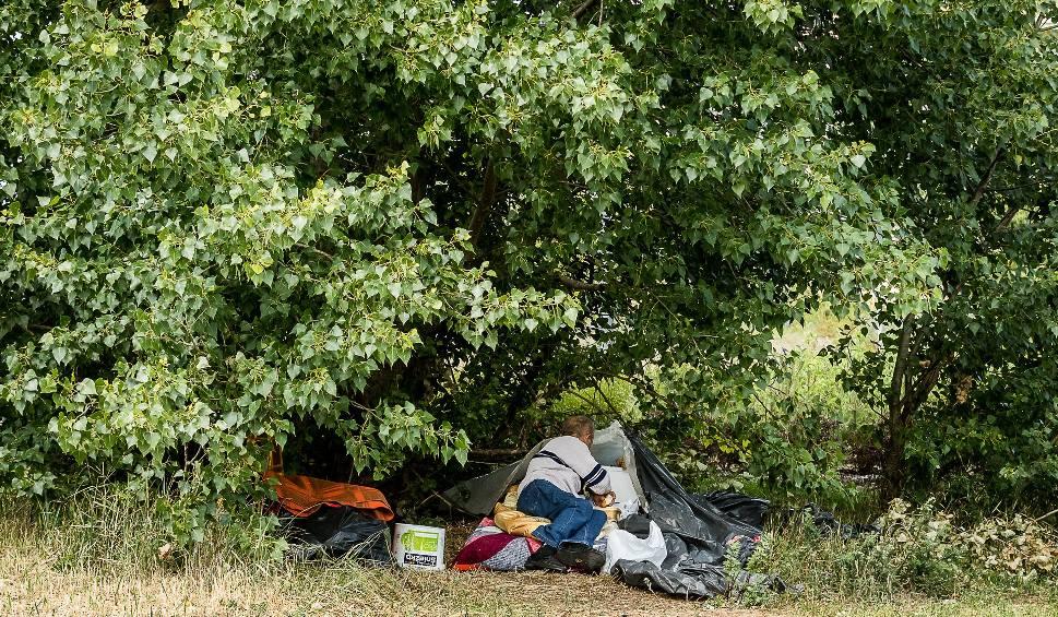Film do artykułu: Bezdomny, dopóki nie łamie przepisów, może mieszkać, gdzie chce. Choćby w krzakach przed sklepem