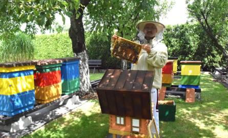 W Żorach pszczoły mają się świetnie. Z wizytą u pszczelarza Leszka Szwedy - ZDJĘCIA I WIDEO
