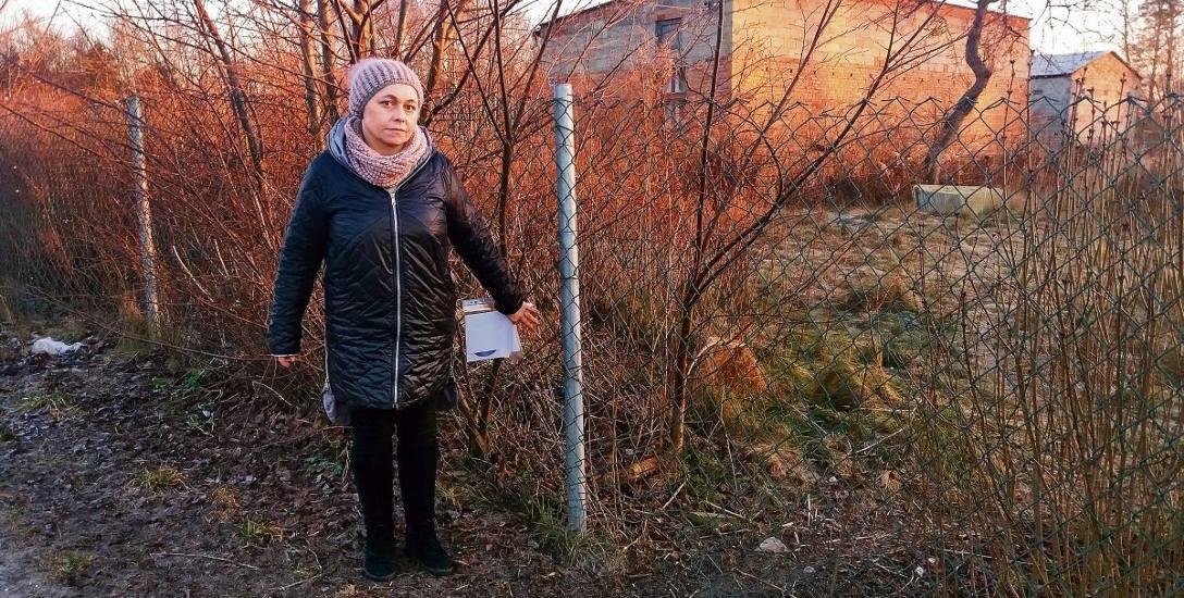Wydeptana przez dziki ścieżka przez ul. Jagodnica kończy się na  posesji, którą zwierzęta lubią odwiedzać.