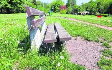 Dziury pod ławkami w Parku Kultury i Wypoczynku mają zostać zasypane