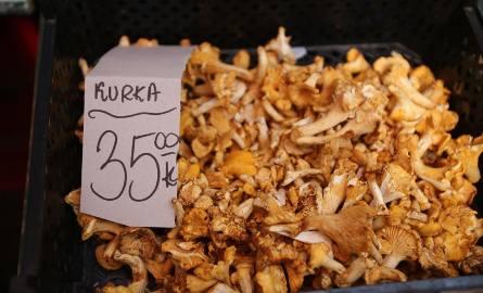 Grzyby: Za zbieranie grzybów w niektórych krajach można zapłacić wysoką karę. Zobacz, w których krajach nie opłaca się zbierać grzybów