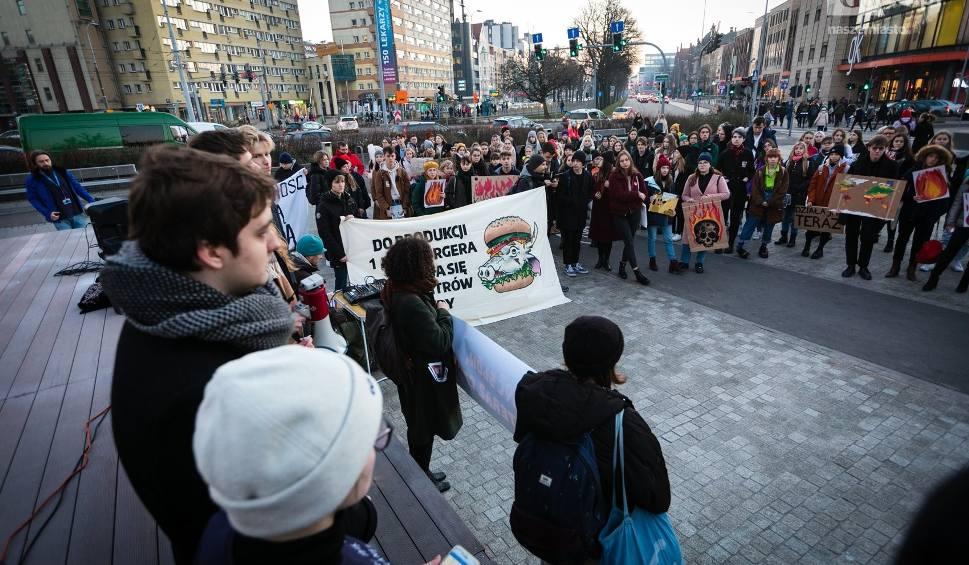 Film do artykułu: Młodzieżowy Strajk Klimatyczny. Szczecinianie solidarni z Australią. Apelują o zmiany [ZDJĘCIA, WIDEO]