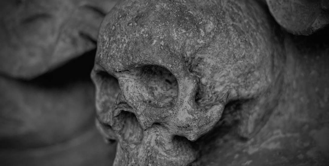 Pracownicy remontujący piwnicę przy ulicy Krakowskiej w Opolu natrafili na ludzkie szczątki