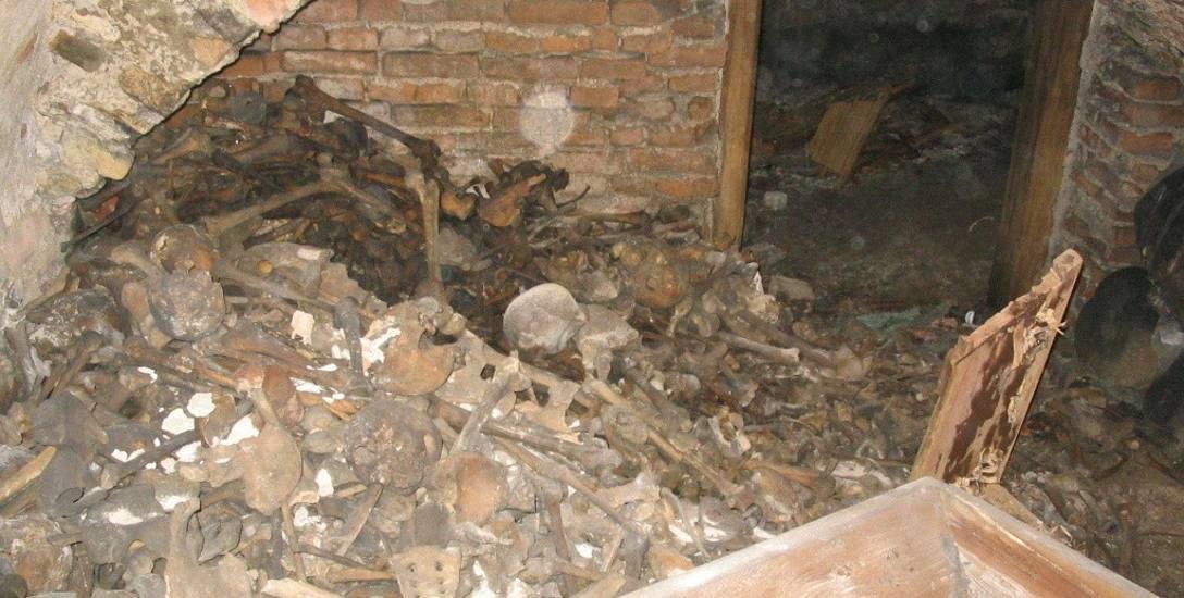 Kości ofiar spalonych w kościele św. Józefa w Gdańsku przez Sowietów, ok. 2006 r.,  (ze zbiorów Zgromadzenia Misjonarzy Oblatów Maryi Niepokalanej w