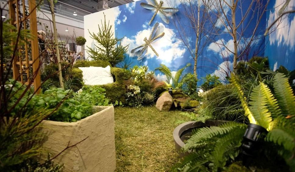 Film do artykułu: Gardenia 2018: Najlepsze aranżacje ogrodowe na MTP [ZOBACZ ZDJĘCIA]