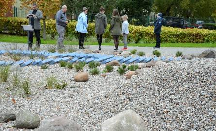 Poznańska szkoła ma ogródek do prowadzenia lekcji pod gołym niebem [ZDJĘCIA]