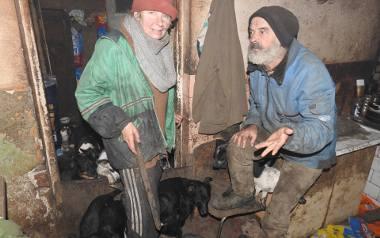 Bród , smród i nieustanne ujadanie psów to codzienność państwa Bierzyńskich. Sami sobie zgotowali ten los