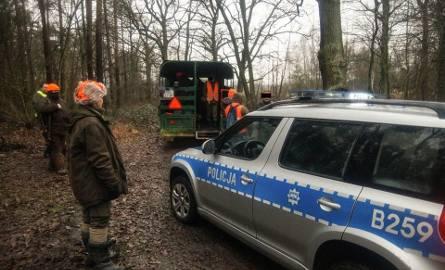 Pod Wrocławiem myśliwi nie postrzelali do dzików. Przyjechała policja (ZDJĘCIA)