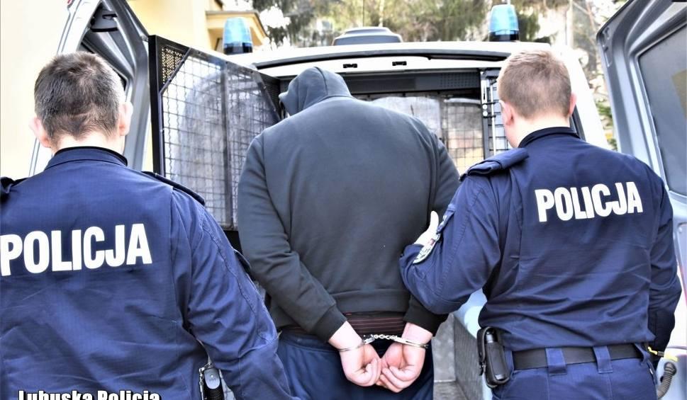 Film do artykułu: KRYMINALNY CZWARTEK. W Gozdnicy i Trzebiczu policjanci po służbie zatrzymali przestępców [WIDEO, ZDJĘCIE]