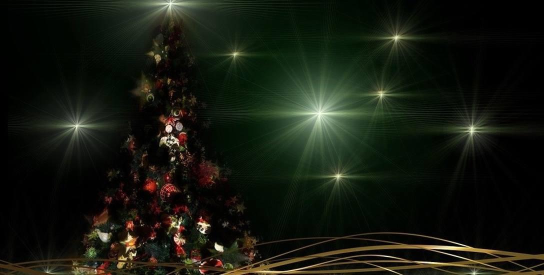 Bez zapachu choinki święta nie byłyby takie same!