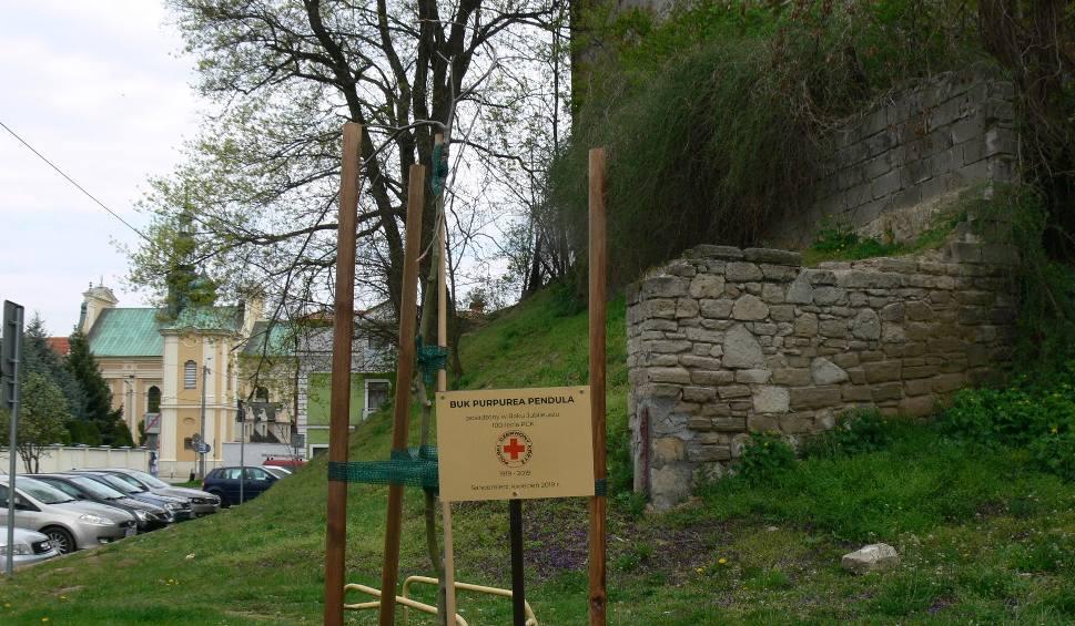 Film do artykułu: W Sandomierzu świętowano ważne wydarzenie. O 100 rocznicy powstania Polskiego Czerwonego Krzyża przypomni buk
