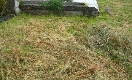 Proboszcz ma cmentarz w nosie! Niech go porządkują parafianie!