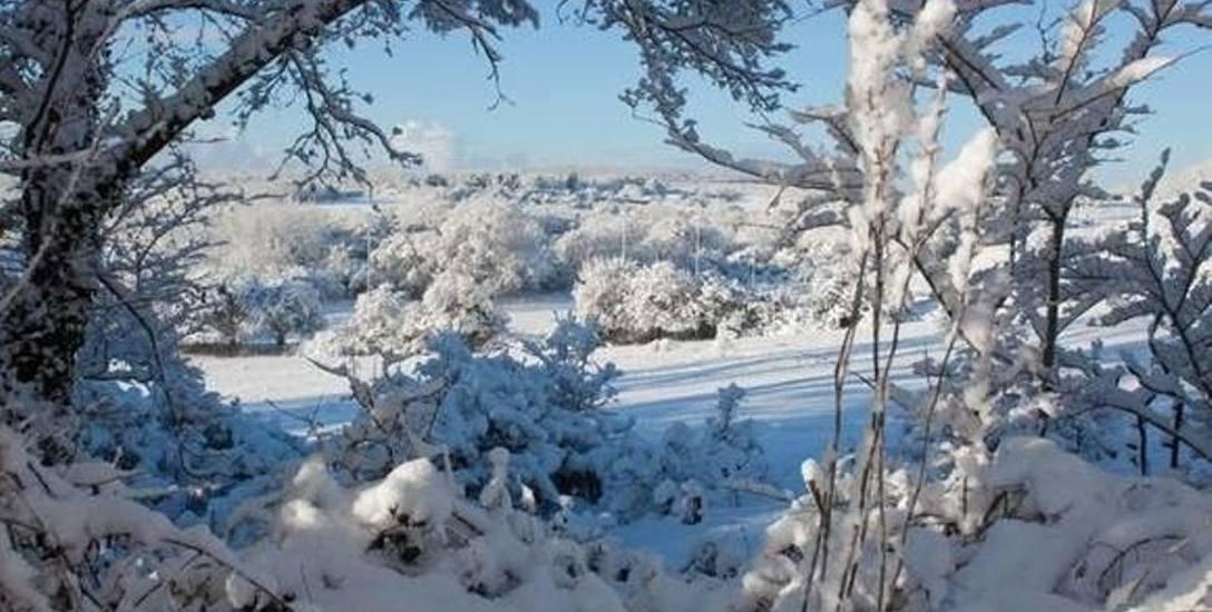 Dziś początek astronomiczej zimy. Najnowsze amerykańskie prognozy pogody