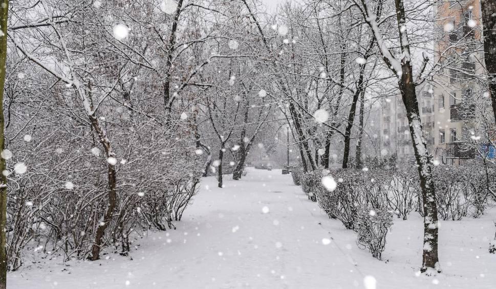 Film do artykułu: Jaka będzie zima 2019/2020? Mamy pierwsze prognozy pogody