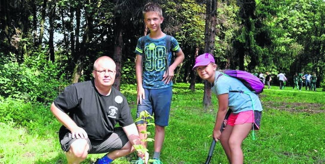 Do Parku Śląskiego trafiły specjalnie ukorzenione drzewa, które po posadzeniu latem mają wytrzymać upały i suszę