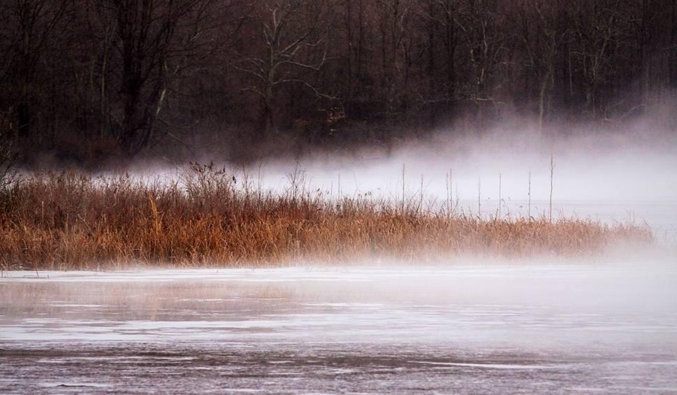 Film do artykułu: Pogoda w woj. lubelskim. W weekend termometry wskażą nawet 11 st. C. Sprawdź prognozę!
