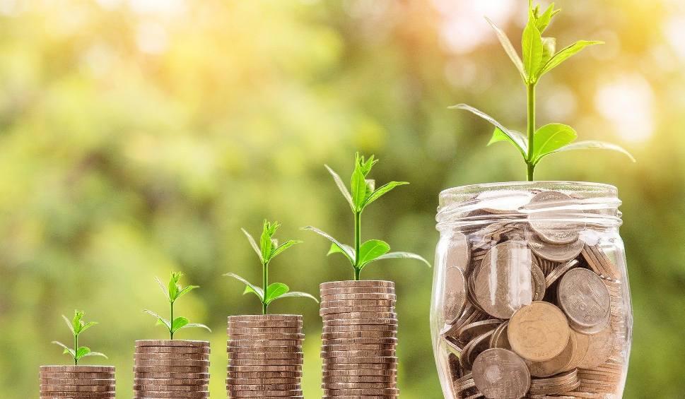 Film do artykułu: Zaliczki dopłat bezpośrednich 2021 w Świętokrzyskiem. Ile Agencja Restrukturyzacji i Modernizacji Rolnictwa wypłaciła w pierwszym tygodniu?