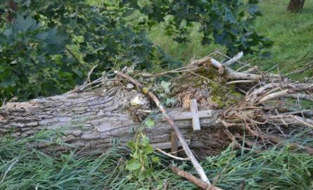 Nawałnica w powiecie kościerskim. Najwięcej strat w gminach Lipusz i Dziemiany. Potrzebna pomoc