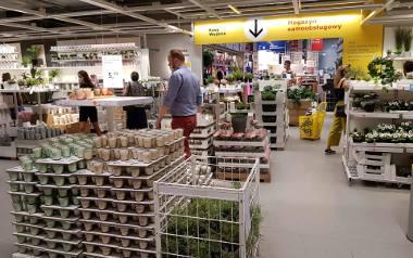 Wyprzedaż w IKEA Katowice. Sprawdź, ile teraz kosztują produkty z IKEA i zastanów się nad wyborem.Zobacz kolejne zdjęcia. Przesuwaj zdjęcia w prawo -