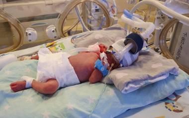 Anastazja, Klara, Laura, Wiktoria i Maksymilian - to pięcioraczki, które w niedzielę przyszły na świat w Ginekologiczno-Położniczym Szpitalu Klinicznym