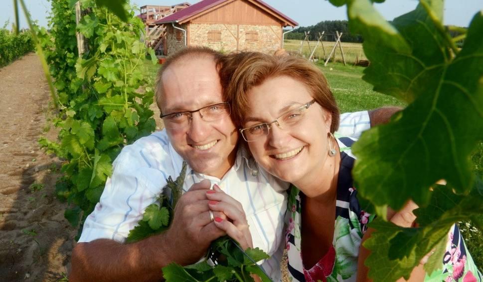 Film do artykułu: Poznajemy winnice w Mozowie pod Sulechowem. Winnicy Cantina pilnuje św. Urban I  [WIDEO, ZDJĘCIA]