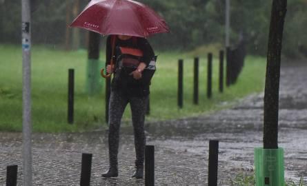 Wielkopolska: Prognoza pogody na niedzielę 26.02.17 [WIDEO]