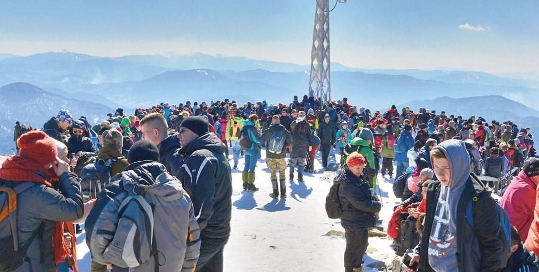 Każdego roku, mimo czasami bardzo trudnych warunków atmosferycznych, w śniegu i przy  porywistym wietrze, na szczyt Tarnicy (1346 m n.p.m.) wchodziło