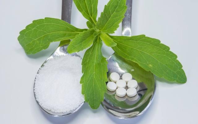 Stewia jest rośliną, która ma bardzo dużą zawartość związków słodzących. Jest stosowana do słodzenia napojów i potraw. Stewia w porónaniu z cukrem jest