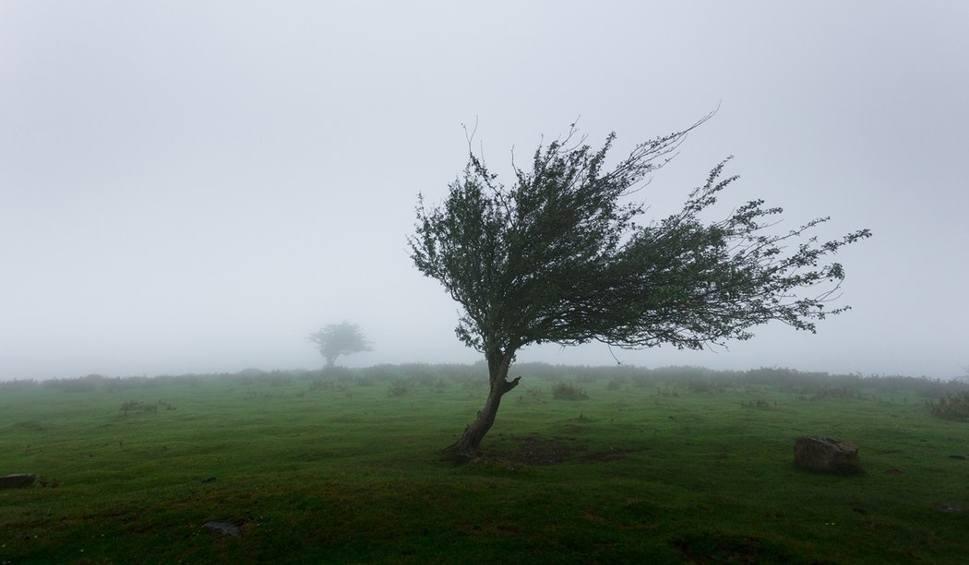 Film do artykułu: IMGW ostrzega przed silnym wiatrem w Lubuskiem. Będzie wiało nawet z prędkością 90 km/h