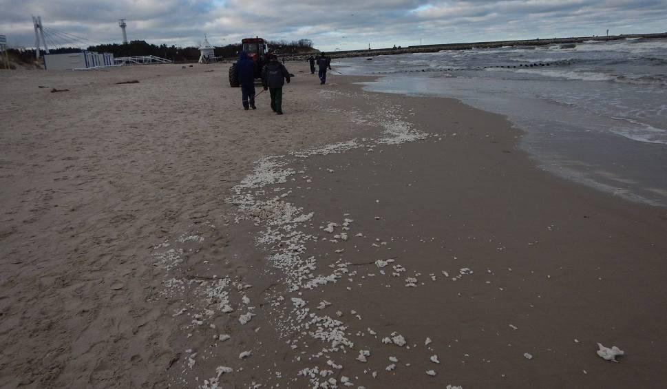 Film do artykułu: Trwa akcja zbierania parafiny z plaży w Ustce [zdjęcia]