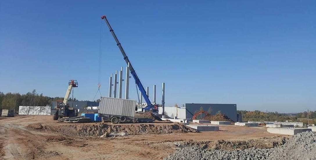 Panattoni Europe rozpoczął już budowę hali magazynowej dla amerykańskiego inwestora