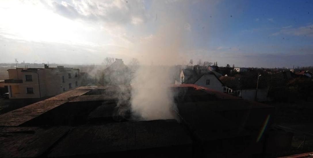 W Opolu ruszyła infolinia antysmogowa. Uruchomiła ją Fundacja Jarosława Pilca dla Czystego Powietrza