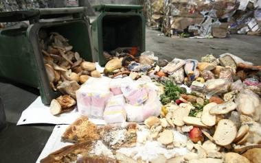 Marnujemy niesamowite ilości jedzenia. Jak to ograniczyć?