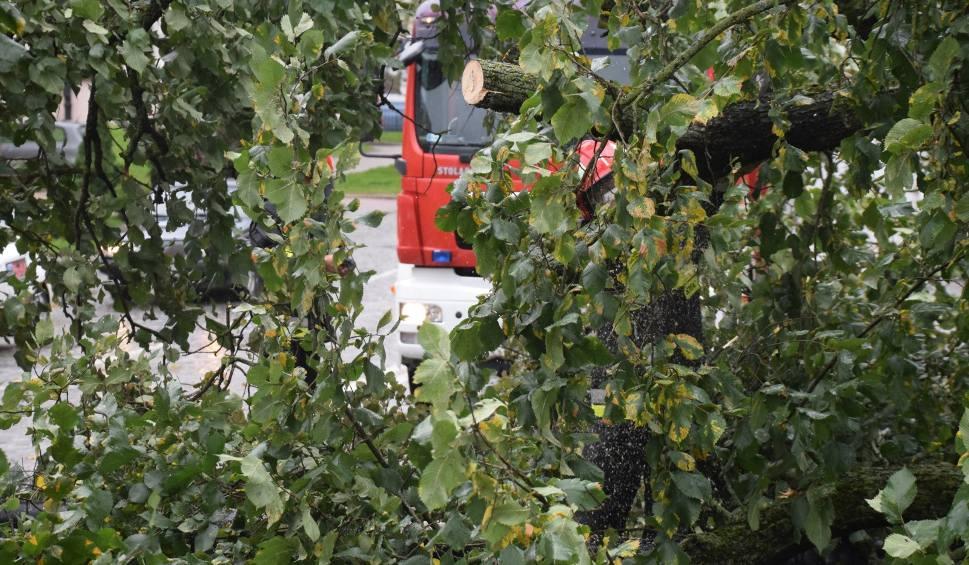 Film do artykułu: Nagła burza i gradobicie w okolicach Odrzykonia. Zerwane dachy, połamane drzewa, uszkodzone pokrycie kościoła