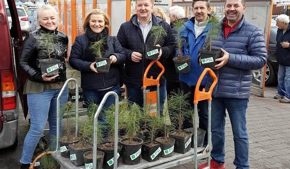 Film do artykułu: Politycy opozycji sadzili drzewa i rozdawali sadzonki w Radomiu. Na złość PiS i ministrowi Szyszko