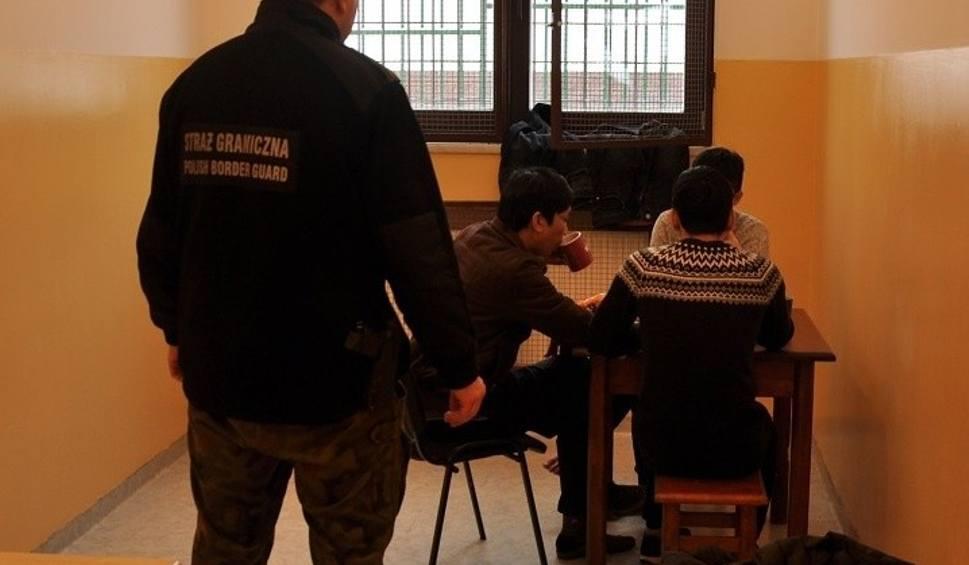 Film do artykułu: Trzech młodych Wietnamczyków nielegalnie przekroczyło granicę z Ukrainy do Polski. Zostali zatrzymani przez straż graniczną