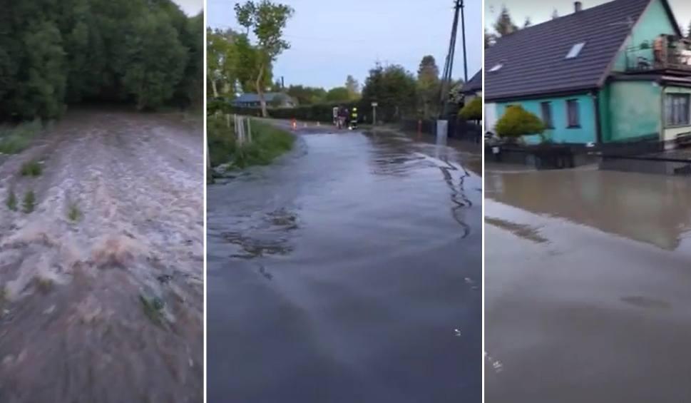 Film do artykułu: Woda przerwała wał w gm. Bobolice. Popłynęła rwąca rzeka WIDEO, ZDJĘCIA