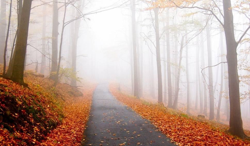 Film do artykułu: Pogoda w październiku 2018. Sprawdź prognozę na tegoroczną jesień w Polsce. Czy będzie ciepło?