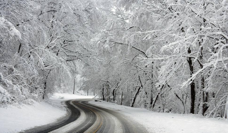 Film do artykułu: Jaka pogoda na święta Bożego Narodzenia 2019? Czy będzie śnieg? Mamy prognozę
