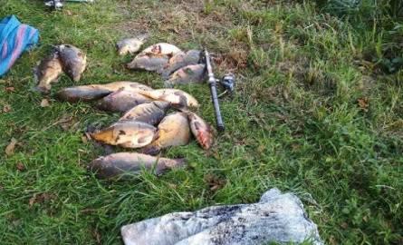 Policjanci opowiadają, że mężczyźni wyłowili 36 kilogramów ryb