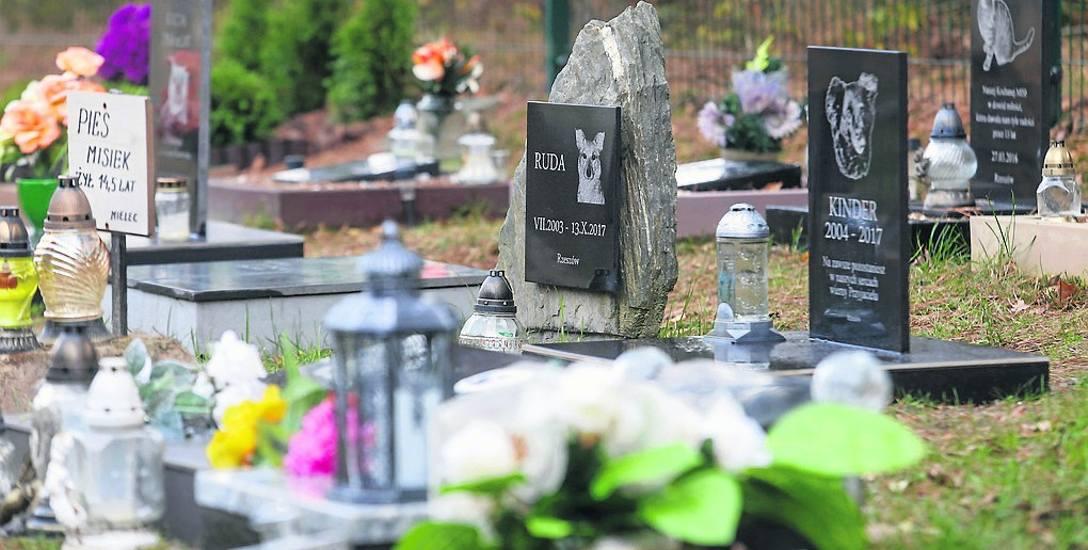 To cmentarz dla zwierząt w Warszawie.  Właściciele odwiedzają swoich Miśków, Burków, swoje Sunie i Perełki. Pamiętają, tęsknią, wiele osób zwyczajnie