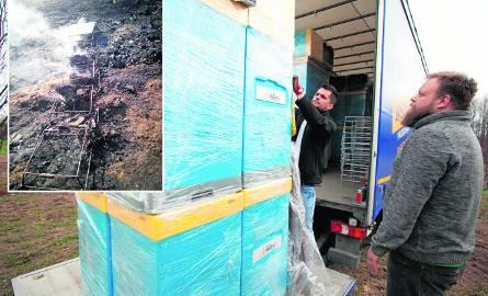 Ponad milion pszczół z pasieki w Dąbrówce spłonęło podczas pożaru trawy, Fundacja Apikultura przekazała pszczelarzowi 30 uli