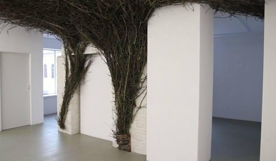 """Film do artykułu: Wystawa """"Czad"""" w Galerii Krynki (wideo)"""