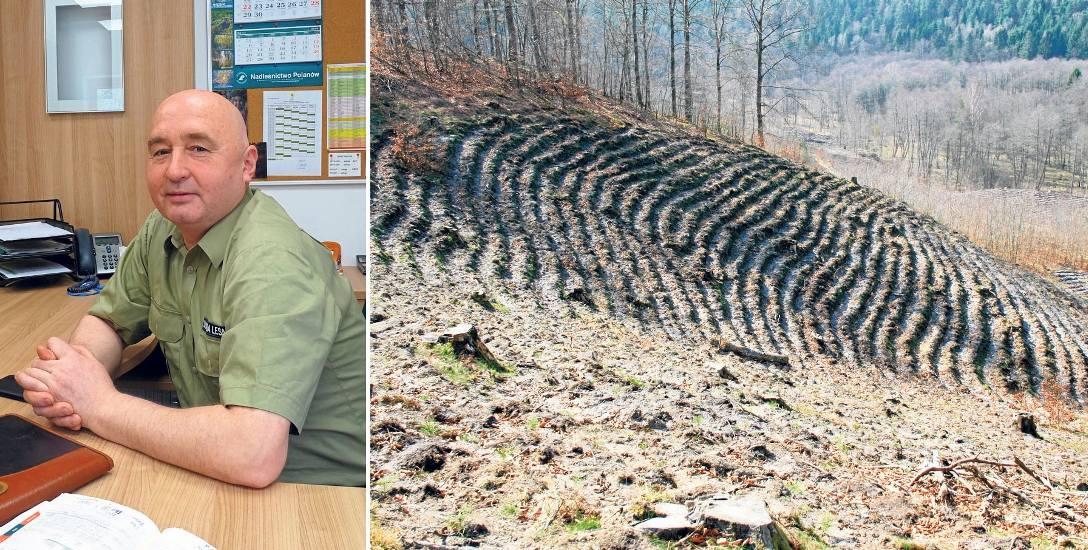 Leśniczy Ryszard Kochanowski za biurkiem - to rzadki widok