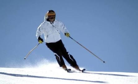 Gdynia też chce stok narciarski. Trójmiasto stanie się mekką dla narciarzy?