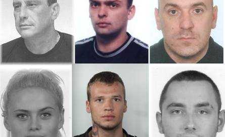 Policja w województwie zachodniopomorskim poszukuje kilkudziesięciu osób za popełnienie przestępstwa z art. 286 § 1, czyli oszustwo - typ podstawowy,