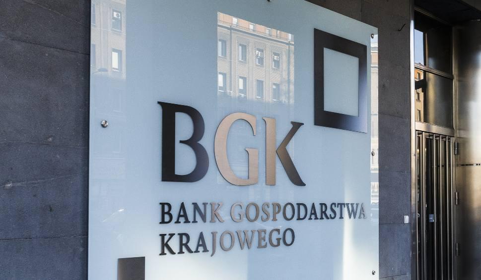 Film do artykułu: Powstaje pakiet pomocowy dla firm. BGK wesprze polskich przedsiębiorców