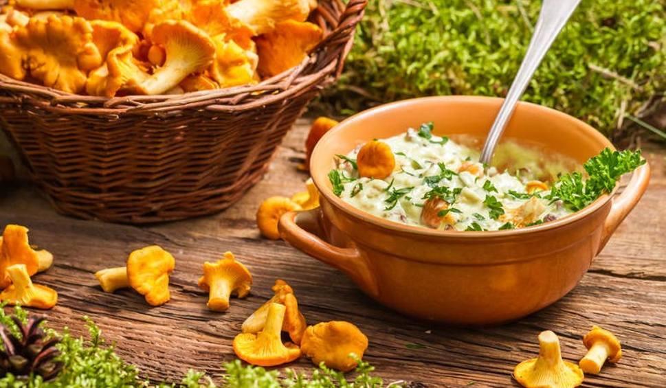 Film do artykułu: Grzyby marynowane, grzyby suszone. PRZEPISY na dania z grzybami