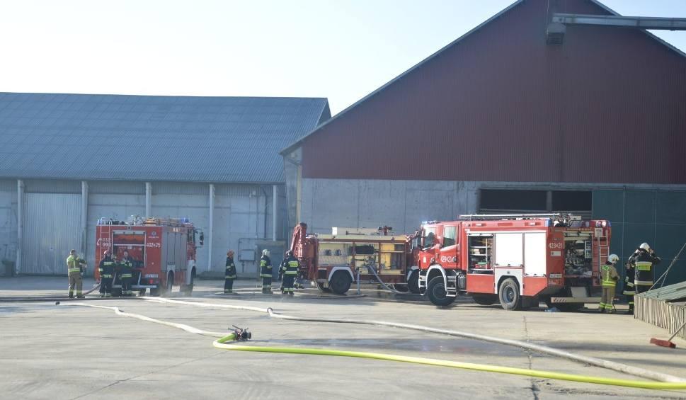 Film do artykułu: Pożar w mieszalni pasz w Koczale 8.02.2020. W akcji sześć zastępów straży pożarnej [ZDJĘCIA/WIDEO]